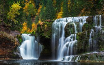 trees, forest, waterfall, autumn, usa, waterfalls, washington, lewis river falls