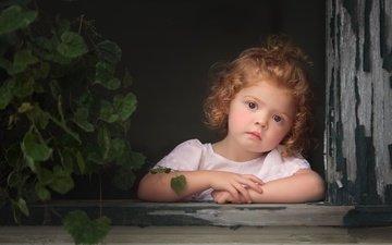 mood, flower, look, children, girl, face, child, window, curls, baby