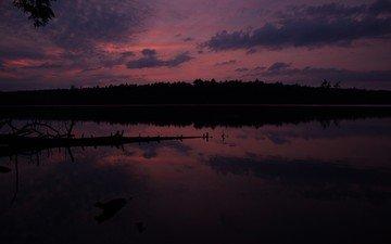 небо, облака, вечер, река, природа, лес, закат, горизонт