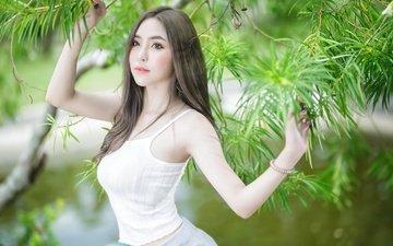 девушка, поза, ветки, взгляд, модель, волосы, лицо, руки, азиатка