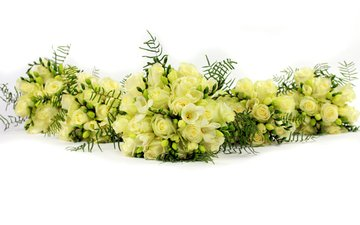 flowers, roses, bouquet, white background, white, freesia, bouquets