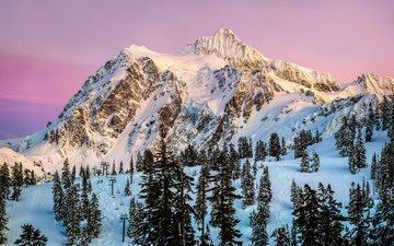 trees, mountains, snow, sunset, usa, north america, washington, mountain shuksan