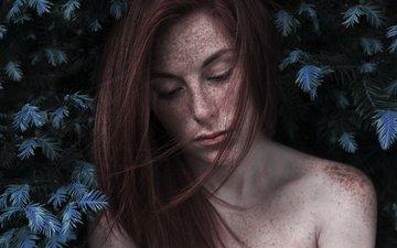 хвоя, девушка, портрет, взгляд, волосы, губы, лицо, веснушки, голые плечи, greta larosa
