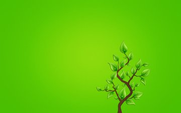 branch, tree, leaves, background, minimalism