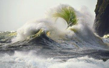 water, wave, sea, rock, squirt, storm