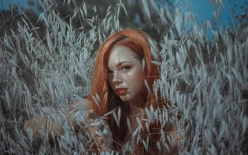 растения, девушка, взгляд, рыжая, волосы, лицо, макияж, rafa sanchez, rafael sánchez