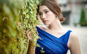 девушка, взгляд, модель, волосы, лицо, азиатка, синее платье, chingcho chang