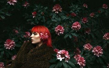 цветы, листья, девушка, взгляд, модель, профиль, лицо, соцветия, красные волосы