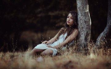 дерево, девушка, платье, взгляд, модель, волосы, лицо, макияж, боке, беатрис