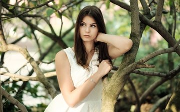 дерево, девушка, платье, ветки, взгляд, модель, волосы, лицо