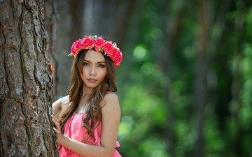 цветы, дерево, девушка, портрет, розы, взгляд, волосы, лицо, венок, голые плечи, розовое платье