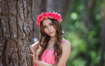 цветы, дерево, девушка, розы, взгляд, модель, лицо, венок, длинные волосы, розовое платье