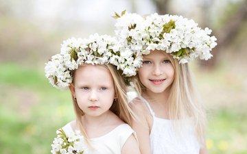 цветы, взгляд, дети, волосы, лицо, девочки, венки
