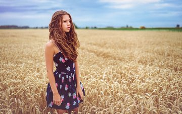 girl, landscape, field, look, model, wheat, face, brown hair, curly hair