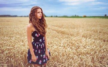 девушка, пейзаж, поле, взгляд, модель, пшеница, лицо, шатенка, вьющиеся волосы
