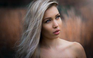 девушка, блондинка, портрет, взгляд, модель, волосы, лицо, макияж, прическа, боке