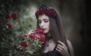цветы, девушка, платье, розы, модель, волосы, лицо, макияж, венок, закрытые глаза