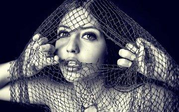 девушка, портрет, взгляд, чёрно-белое, модель, сетка, губы, лицо, сеть
