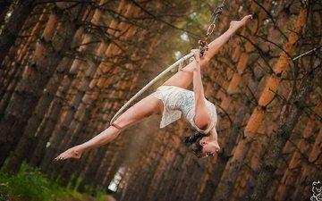 деревья, девушка, стволы, спорт, гимнастика, гибкость, михаил решетников