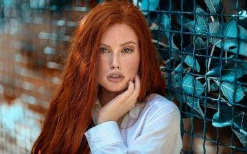 девушка, портрет, взгляд, сетка, лицо, губки, длинные волосы, рыжеволосая, кареглазая, jessica napolitano