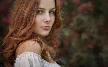 девушка, взгляд, лицо, губки, длинные волосы, рыжеволосая, голое плечо, siegart von schlichting, mona