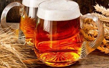 кружки, колоски, пиво, пена