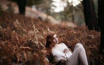 деревья, растения, лес, девушка, грусть, взгляд, волосы, лицо, отдых, задумалась, рыжеволосая