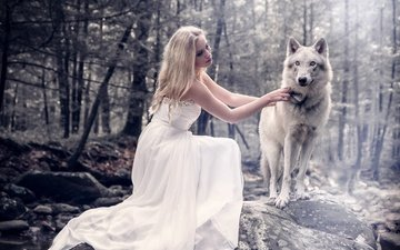 forest, girl, dress, look, hair, face, wolf, photo manipulation