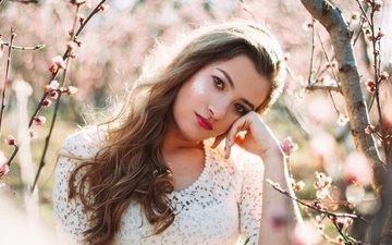 природа, девушка, портрет, ветки, взгляд, модель, весна, волосы, губы, лицо