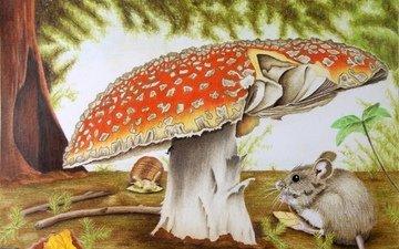 природа, гриб, мышь, чертеж, художественное произведение