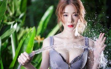 вода, растения, девушка, взгляд, брызги, грудь, руки, азиатка, декольте, шланг