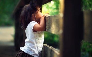 the fence, children, girl, child, curiosity, bokeh