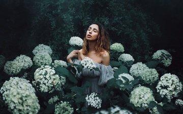 цветы, девушка, настроение, гортензия, amy spanos