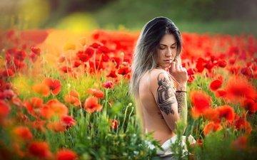 цветы, девушка, настроение, маки, луг, тату, спина, боке