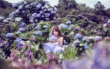 цветы, девушка, азиатка, гортензия, фотоссесия