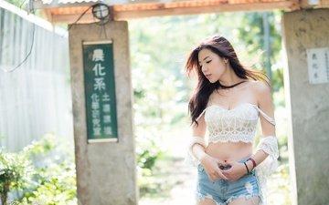 девушка, фон, азиатка