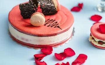 лепестки, сладкое, торт, десерт
