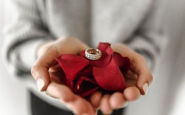 лепестки, кольцо, руки, драгоценности, ювелирные изделия, обручальное кольцо