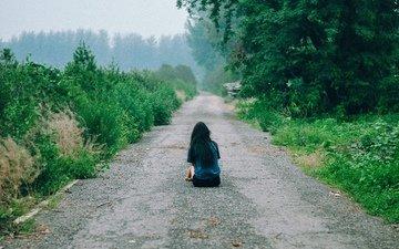 road, trees, girl, fog