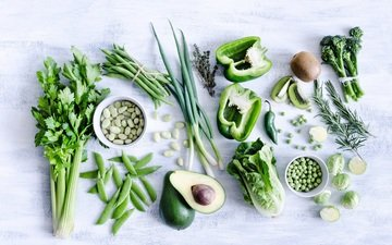 greens, bow, vegetables, polka dot, pepper, cabbage, avocado, beans, cilantro
