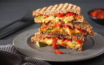 sandwich, cheese, bread, vegetables, plate, tomatoes, toast