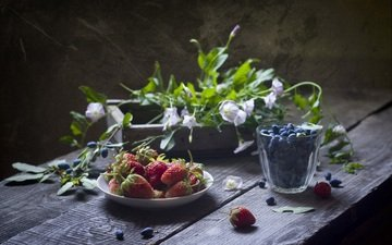 flowers, strawberry, berries, blueberries, still life, wooden surface