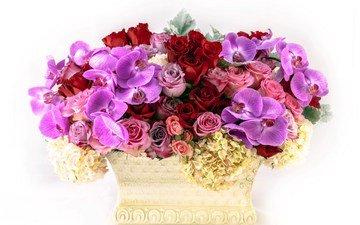 цветы, розы, много, ваза