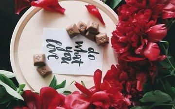 цветы, букет, шоколад, пионы