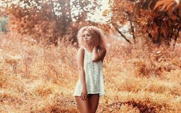 девушка, платье, трусики, грудь, ножки, фигура, кудряшки