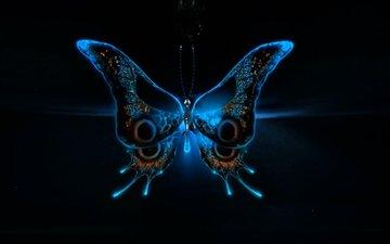 бабочка, 3д