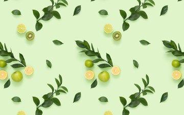 листья, фон, ветки, фрукты, яблоки, апельсины, цитрус, киви