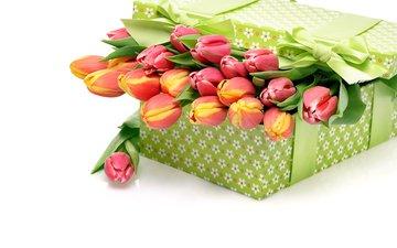 цветы, букет, тюльпаны, белый фон, подарок, бантик, . коробка