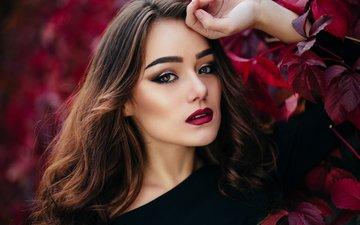 девушка, портрет, взгляд, модель, лицо, макияж, длинные волосы