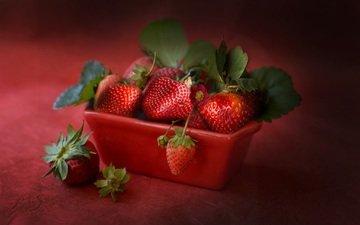 ягода, клубника, спелая, земляника, сочная